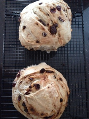 orange, cranberry, chocolate bread